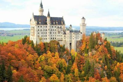 Colourful trees around the Neuschwanstein Castle in Fall.