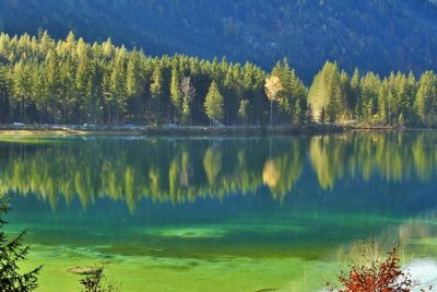 Green lake Hintersee near Ramsau Berchtesgaden.