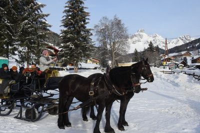 Horse sleigh ride in Filzmoos.